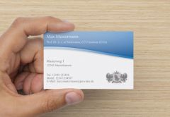 Business Cards 100 / 250 / 500